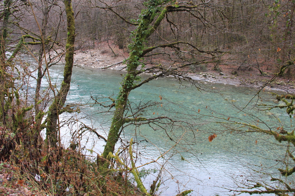 Река Бзыпь.